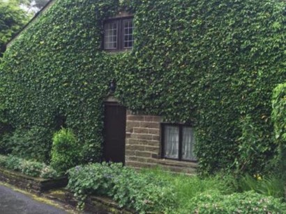 2 Bed Cottage House To Rent - Main Image